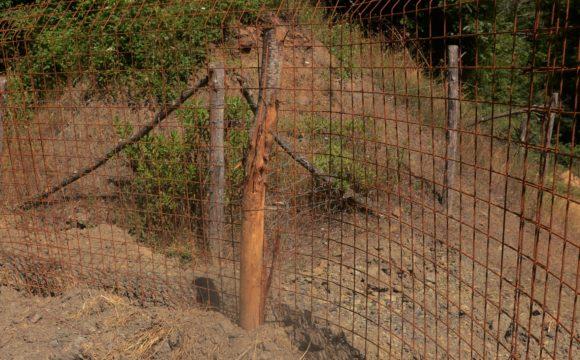 Recinzione Per Cinghiali.Recinzioni Metalliche Fisse Protezione Del Bestiame