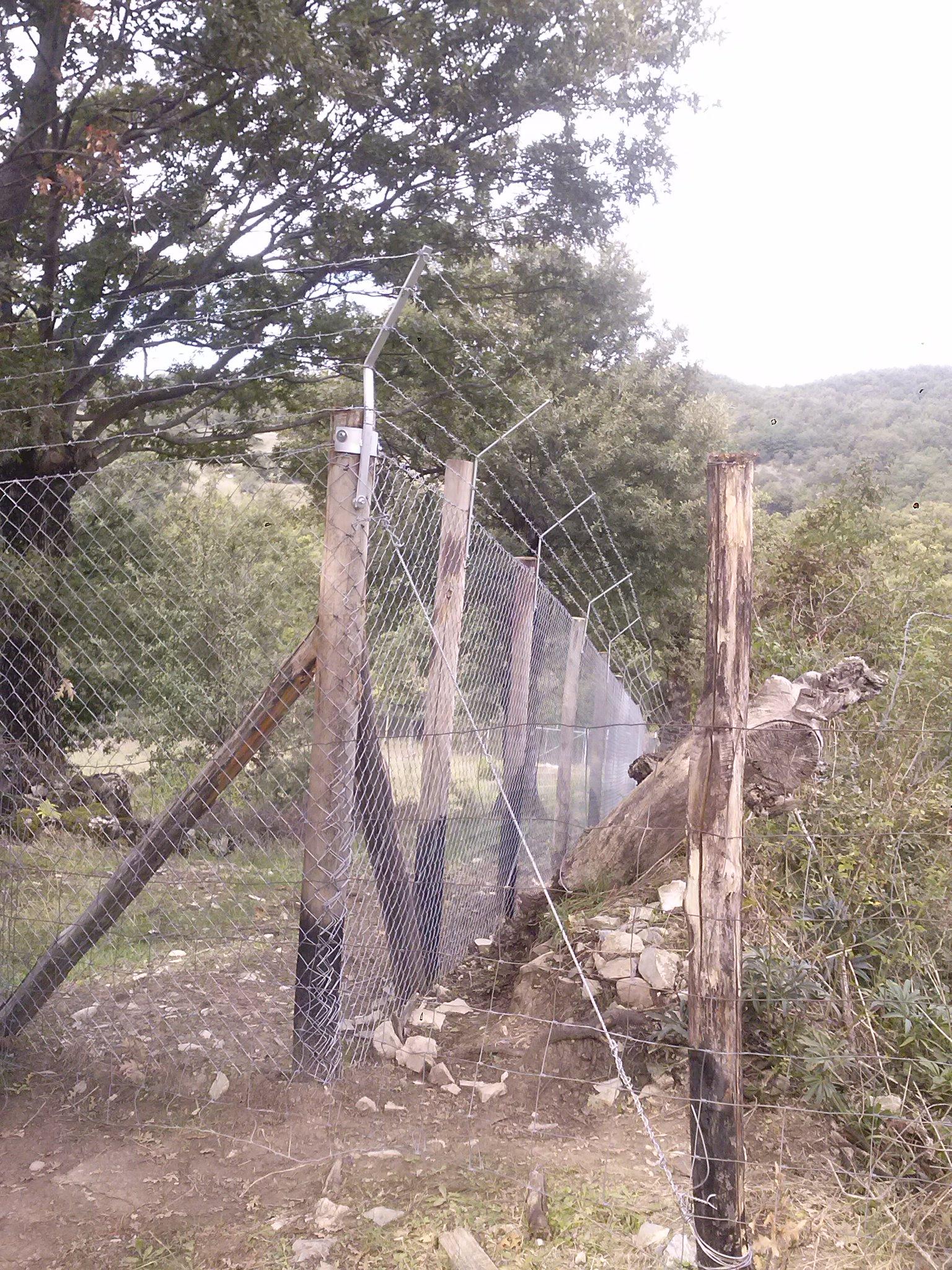 With recinzioni economiche for Recinzione economica fai da te